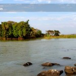lake-tana-in-ethiopia