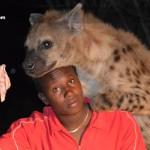 Hyena-Feeding