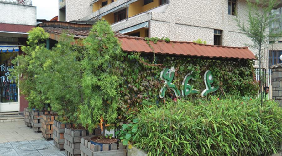 Efoy-Restaurant3