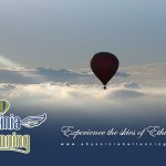 abyssinia-ballon
